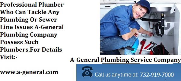 How Professional Plumbers Can Save Your Expenses