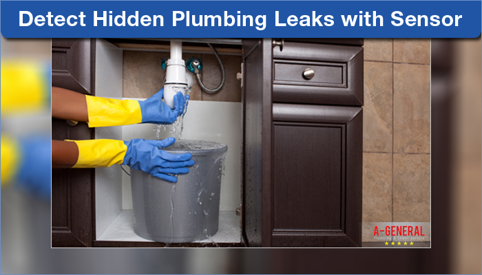 Detect Hidden Plumbing Leaks with Sensor