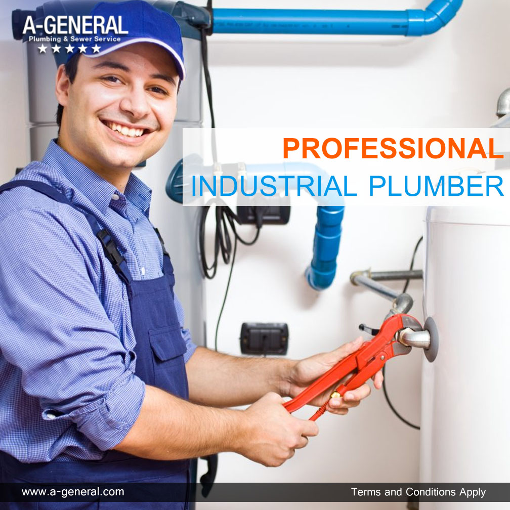 A ROLE OF PROFESSIONAL INDUSTRIAL PLUMBER